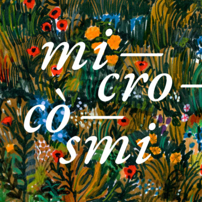 microcosmi nel parco Sassso Simone e Simoncello
